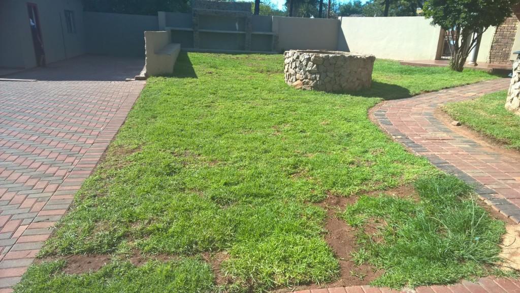 Grass removal_13