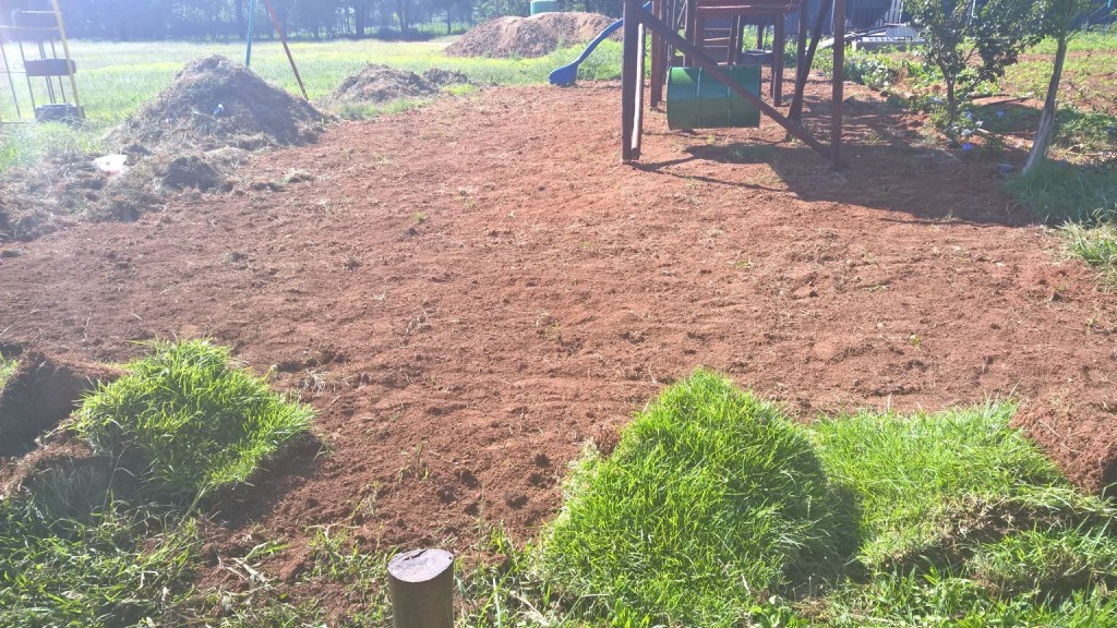 Grass removal_21