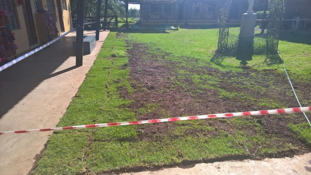 Grass removal_29