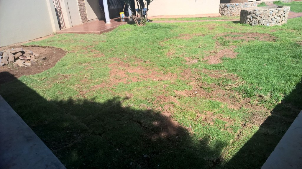 Grass removal_3