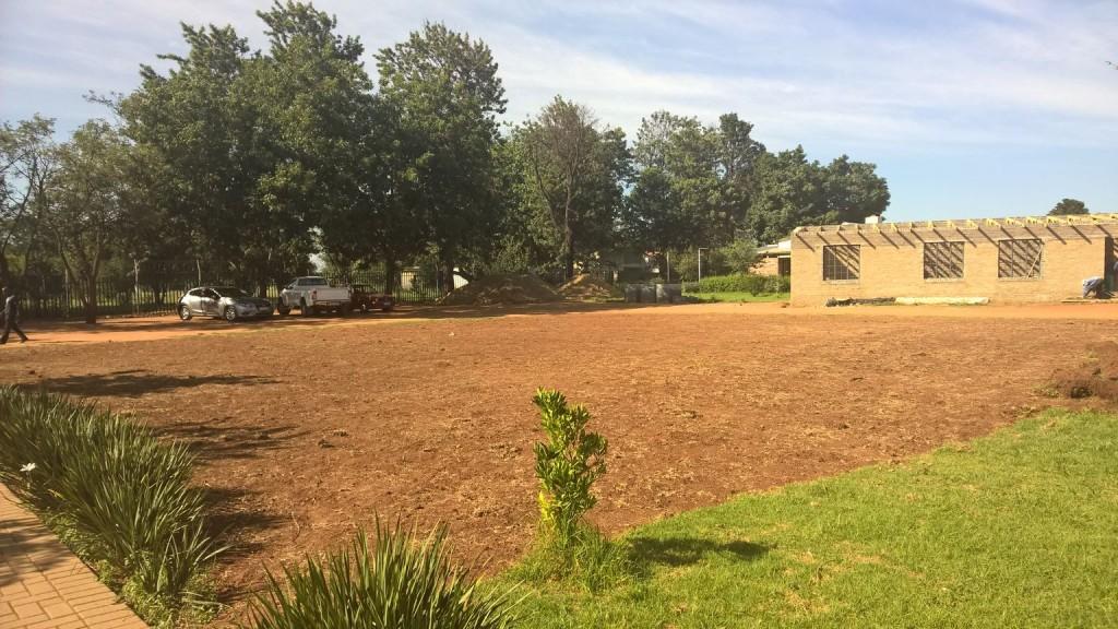 Grass removal_40