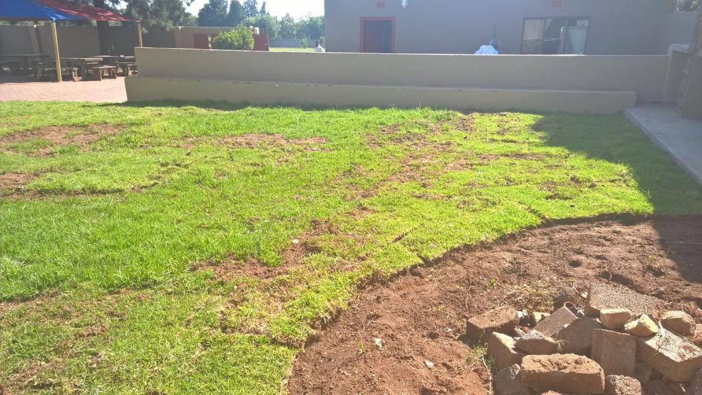 Grass removal_6