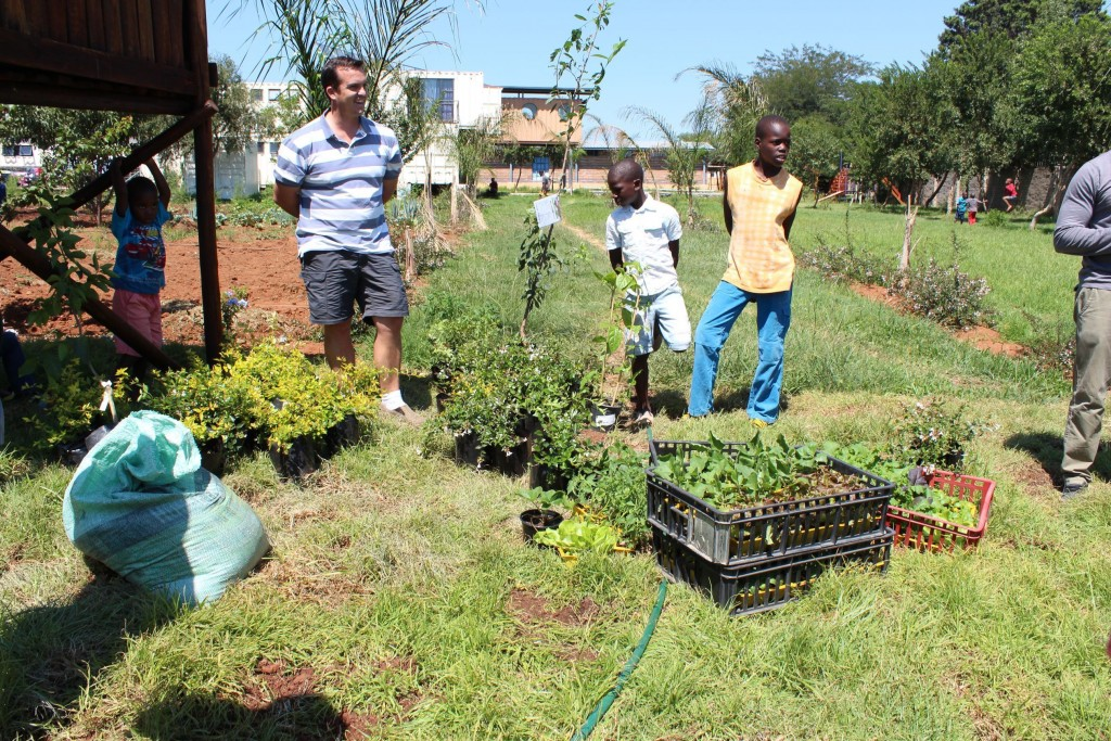 Horticultural Green Group_22
