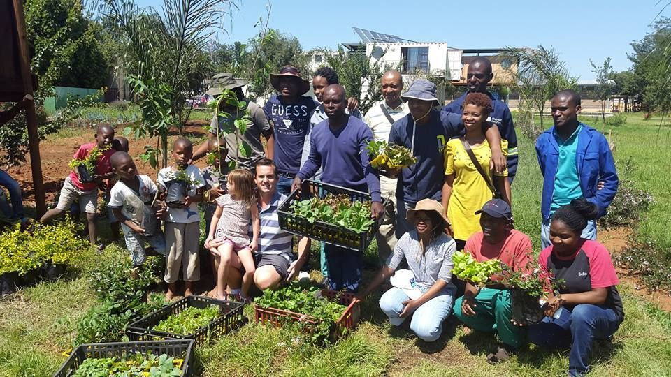 Horticultural Green Group_37